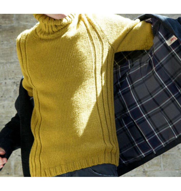 Modèle pull Phil Looping Homme